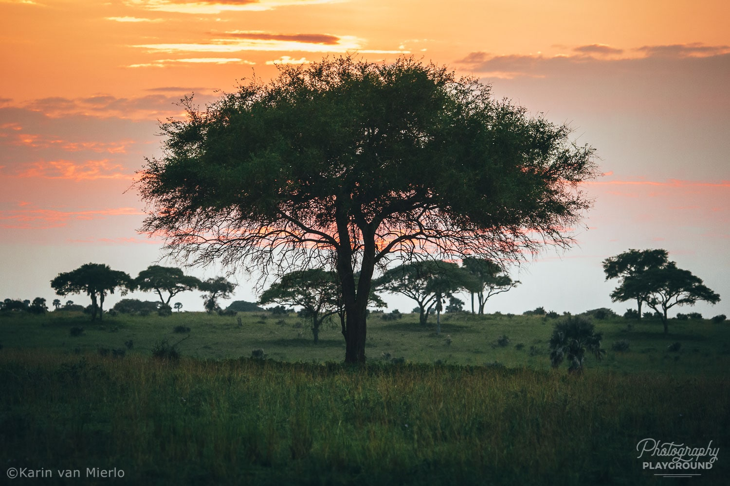 sunset photography, how to photograph the sunset | Photo: Sunrise at Murchison Park, Uganda ©Karin van Mierlo, Photography Playground