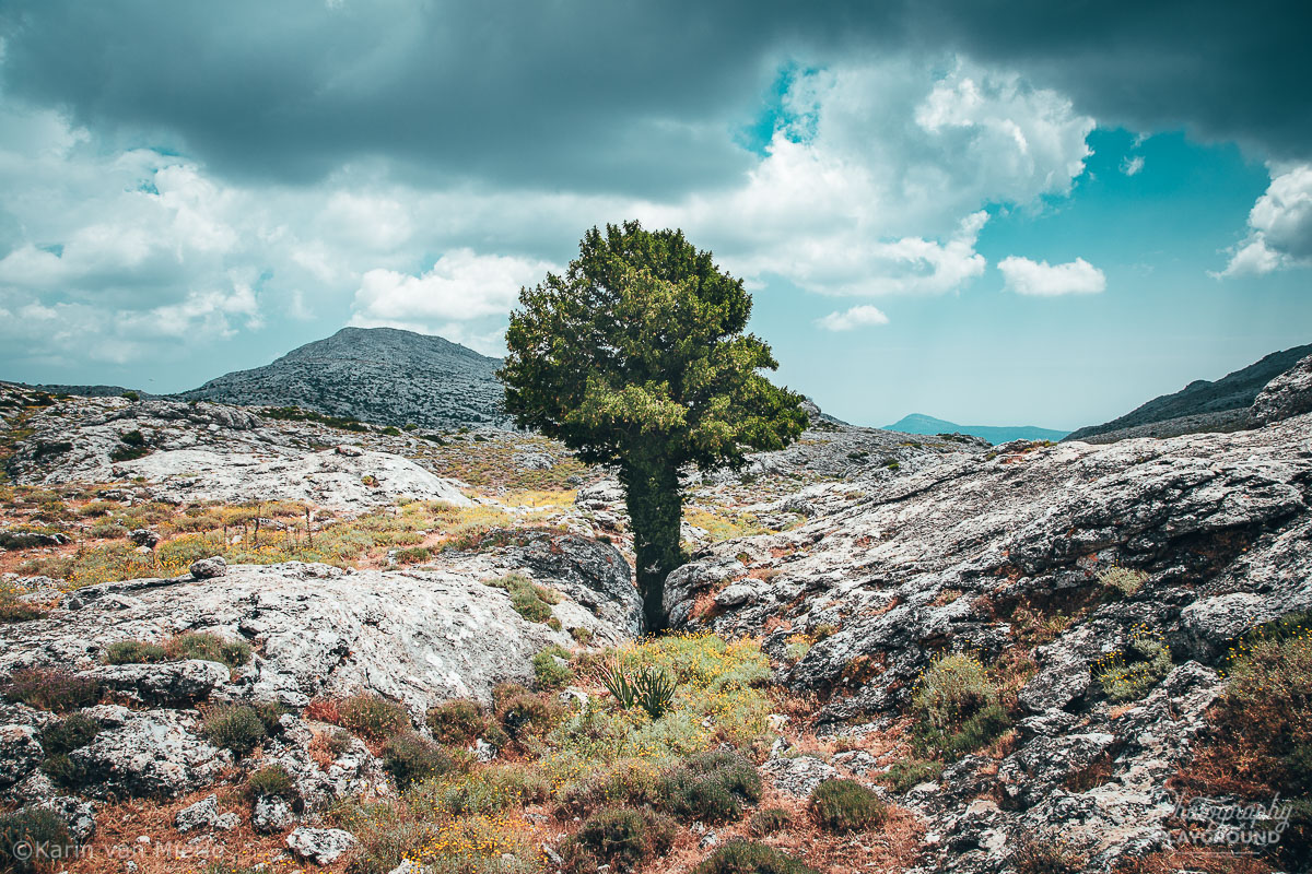 sharp focus, how to get sharp photos | Photo: Landscape in Sardinia, Italy ©Karin van Mierlo, Photography Playground