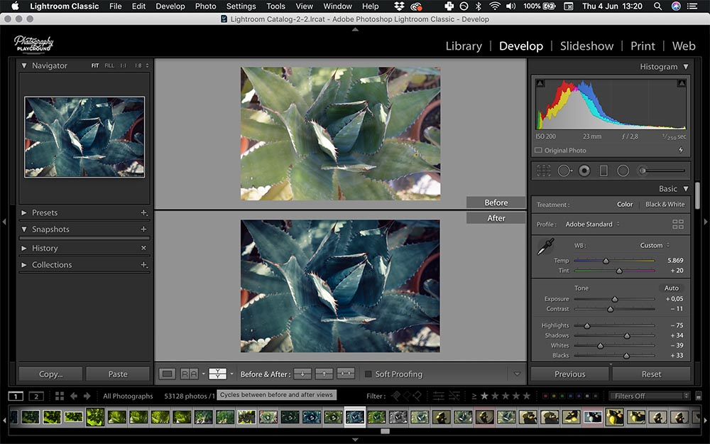 Lightroom hacks| Photo: Screenshot of Lightroom, Before and After View © Karin van Mierlo | Photography Playground.