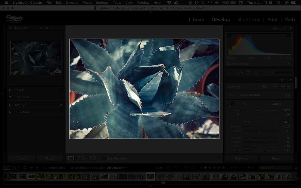 Lightroom hacks| Photo: Screenshot of Lightroom, Distraction Free Mode © Karin van Mierlo | Photography Playground.