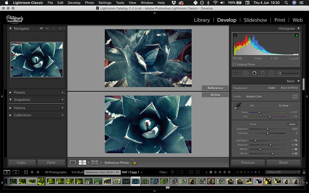 Lightroom hacks| Photo: Screenshot of Lightroom, Reference View © Karin van Mierlo | Photography Playground.