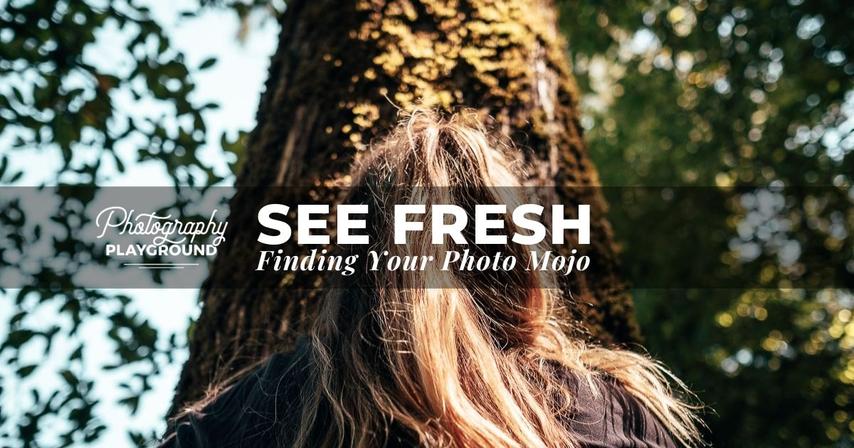 See Fresh: Finding Your Photo Mojo