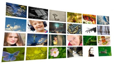 How to Choose the Right Niche for Stock Photography